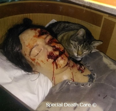 Special Death Care - dieren